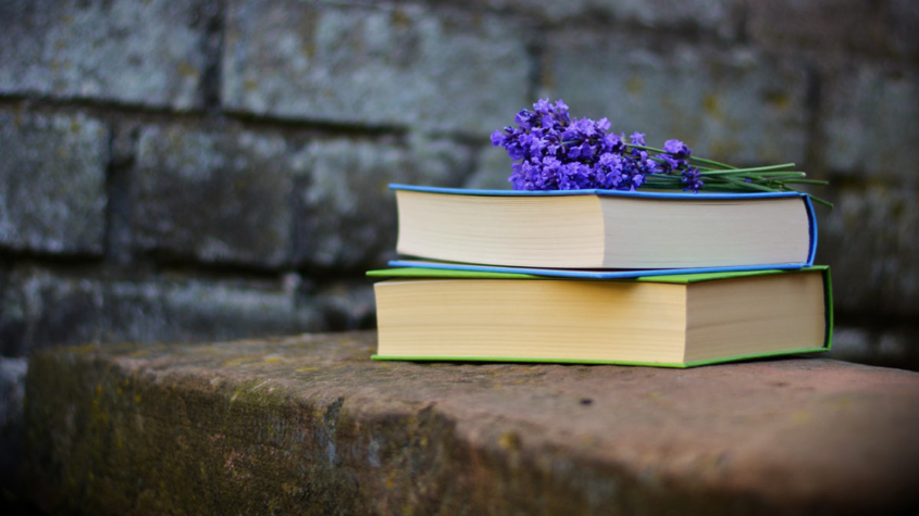 Ignorance and Wisdom-books and flowers