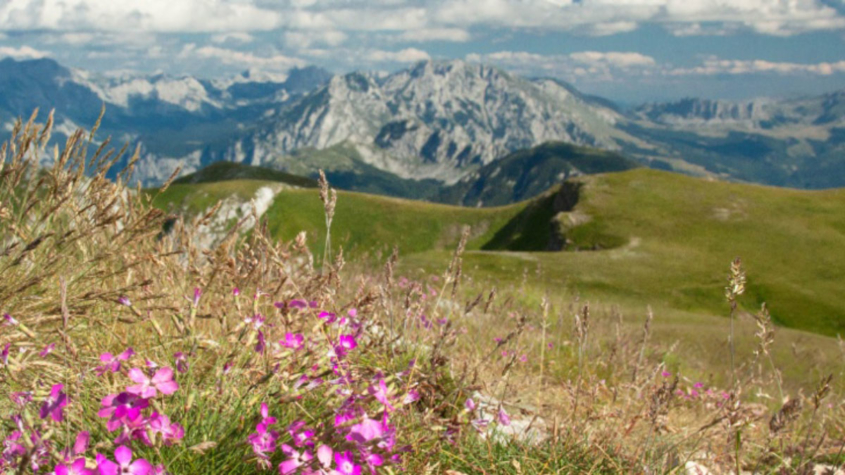 View from the Balkans Via Dinarica White Trail