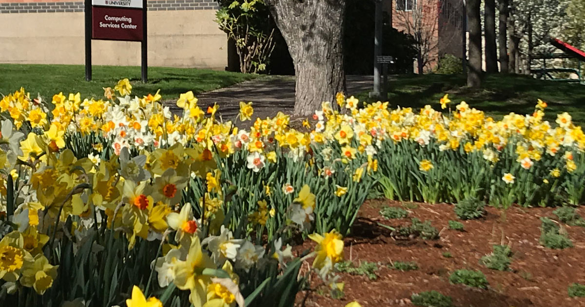Earth Month in full bloom at SOU