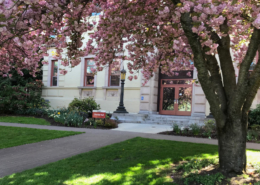 SOU's Presidential Search Committee will conduct interviews in October